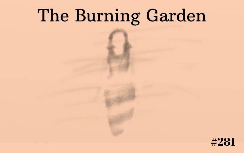 The Burning Garden, Short Story, Writing Prompts, The Penned Sleuth, Family, Drama, People